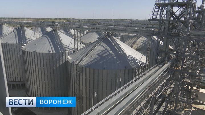 Элеваторы воронежской области список фольксваген транспортер т4 дизель отзывы владельцев